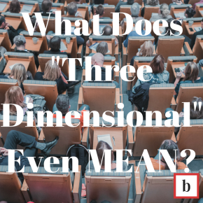 """What Does """"Three Dimensional"""" EvenMEAN?"""