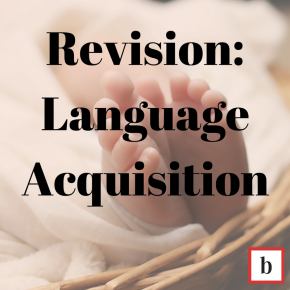 Revision: Language Acquisition